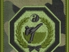 logo wssw kamuflaż