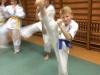 XVI Regionalny Egzamin Oyama Karate WSSW Poznań Robert Budny (3)